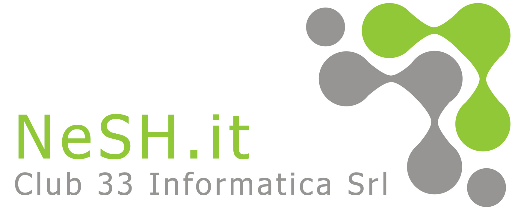 Logo Nesh.it Club 33 informatica Srl